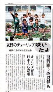 TOHOKU-tulpen op Naraha basisschool